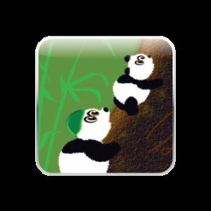 panda_app_icon